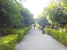 gir jungle lodge